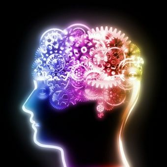 Perception & Cognition Psychology Flashcards