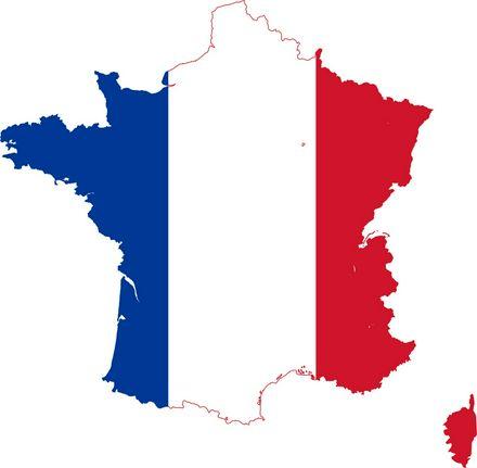 Vocabulario frecuente en Francés