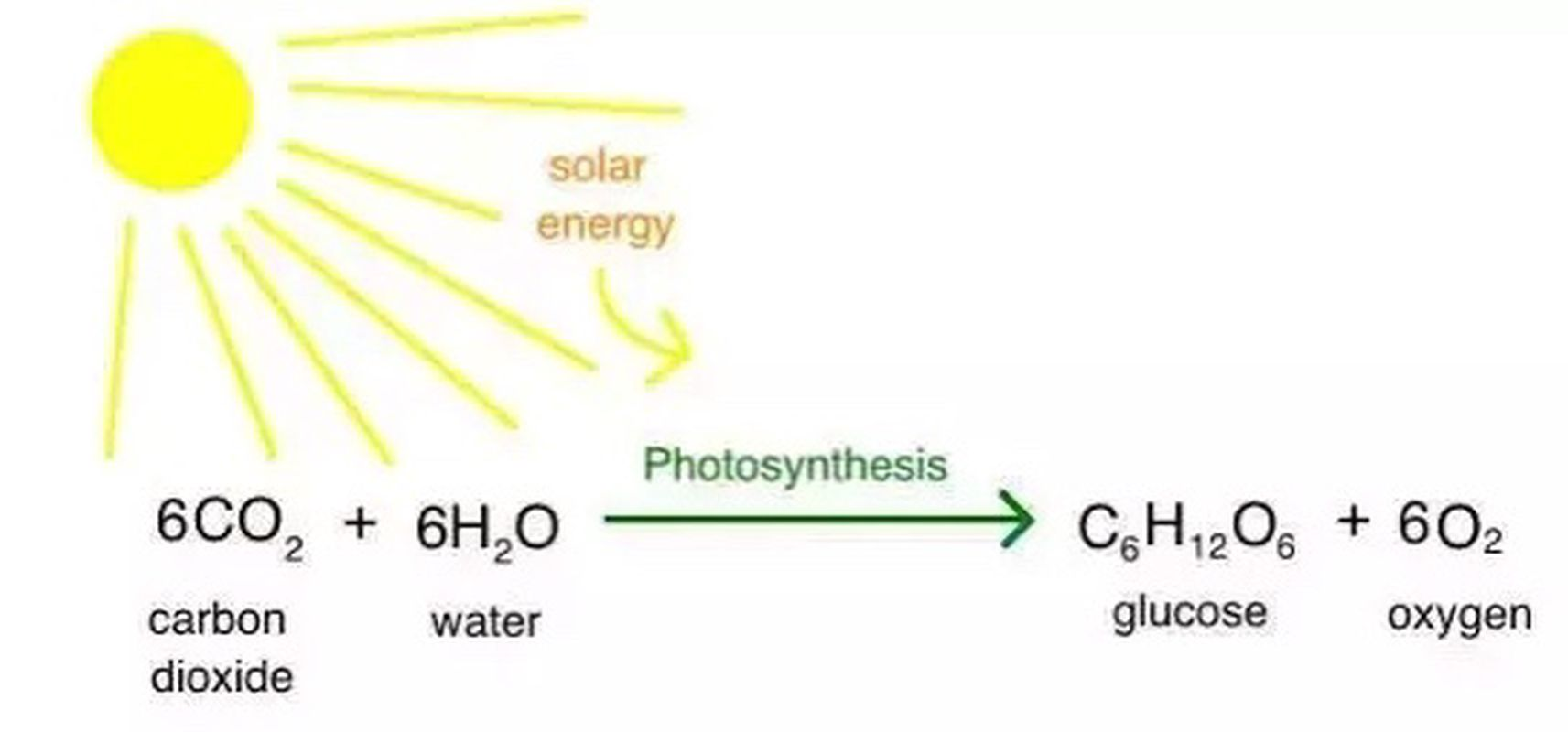 6CO2 + 6H2O ----> C6H12O6 +6O2