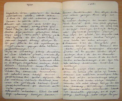 Letteratura Italiana Contemporanea